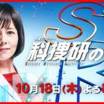 科捜研の女正月スペシャル2019の感想は?視聴率は判明してる?1年間放送発表でネット歓喜!!